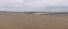 Sandy Beach On The North Sea, ...