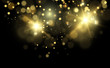 Vector Gold Sparkles, magic, bright light effect on a transparent background. Gold dust.