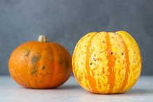 Trendy Ugly Organic Small Pumpkin On Light Grey Stone Background. Ugly Food Concept. Strange Pumpkins.