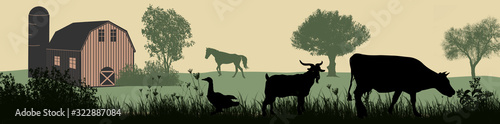Fototapeta Farm animals silhouette on beautiful rural landscape obraz