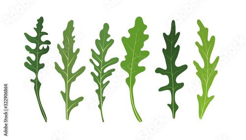 Photo Mix of salad leaves