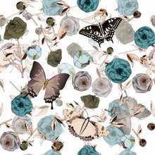 Butterfly And Leaves, Stems An...