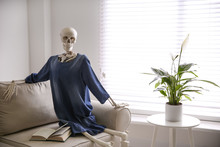Human Skeleton With Book On So...