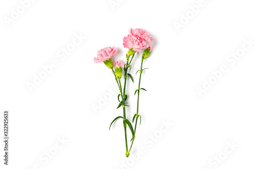 bouquet of pink carnation flower isolated on white background Top view Flat lay Canvas Print