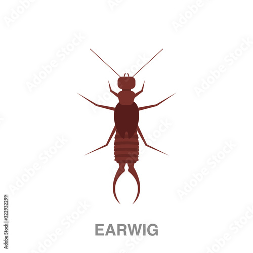 Vászonkép earwig flat icon on white transparent background
