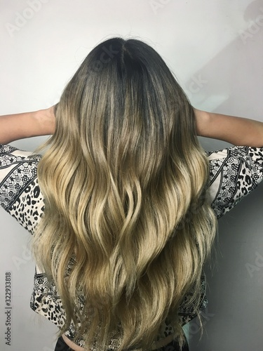 Ashy Blonde Ombre Canvas Print