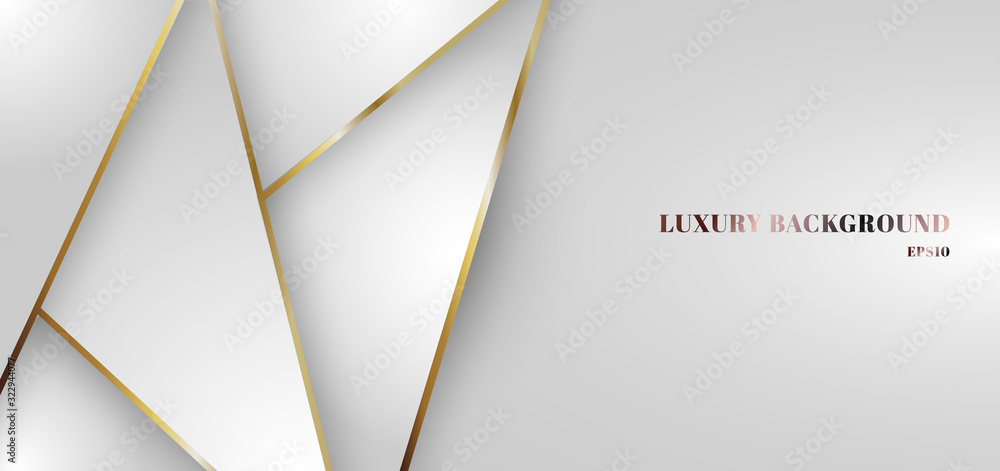 Fototapeta Abstract white gradient triangle low polygon pattern with golden line background.