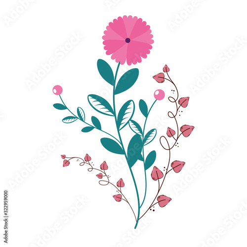 Fototapeta cute flower with branches and leafs isolated icon vector illustration design obraz