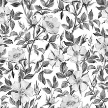 Dog Rose Seamless Pattern. Gen...