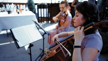 Small String Orchestra Perform...