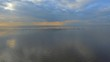 Stunning aerial footage of beach coastline with flocks of seagulls flying