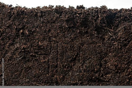 Soil or dirt section isolated on white background Fototapeta