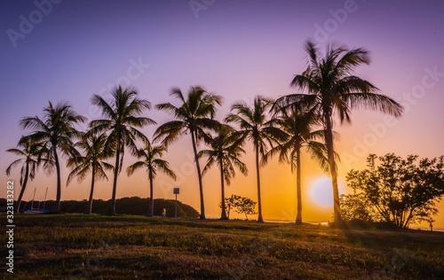 Photo tropical miami cuba florida sun beach tree palm sunset sky silhouette sunrise oc
