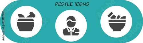pestle icon set Canvas Print