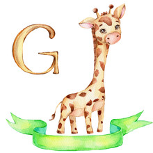 """Cute Little Giraffe And Green Ribbon And Letter """"G""""; Watercolor Hand Draw Illustration; Can Be Used For Baby Shower Or Kid Poster; With White Isolated Background"""