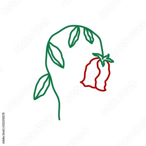 Obraz na plátně Wilted rose flower