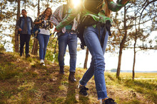 Young People With Backpacks Walking In The Forest