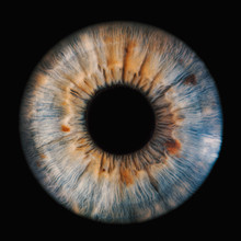 Human Iris On Black Background