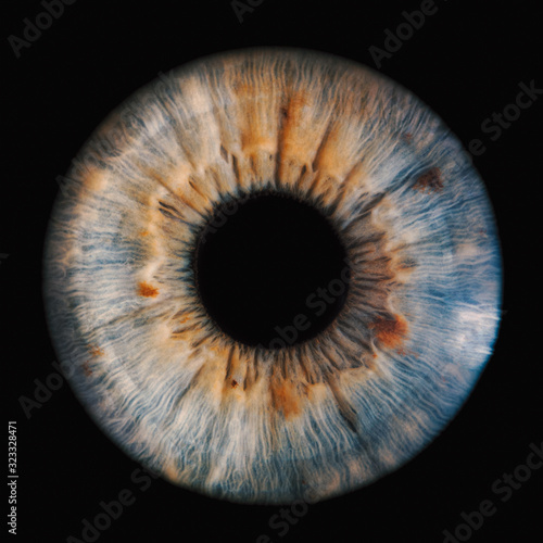 Photo human iris on black background