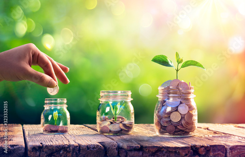 Fotografía Save Money And Investment Concept - Plants Growing Up In Jars