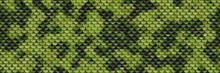 Skin Pattern Seamless- Texture Illustration