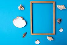 Frame And Shells On A Blue Bac...