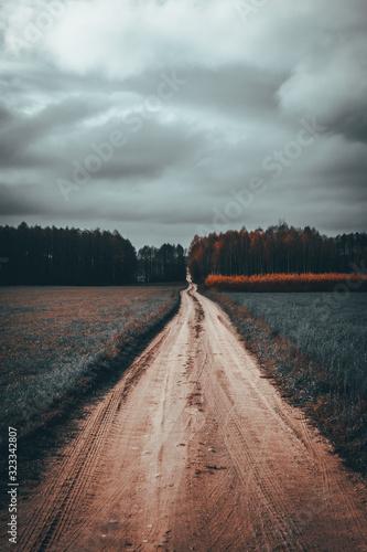 Obraz na plátně szutrowa droga między polami w pochmurny, jesienny dzień