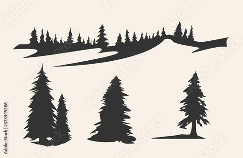фотография Vector silhouette of different pine trees