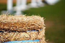 Close Up View On Hay Stack