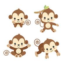 Little Monkey Cartoon.