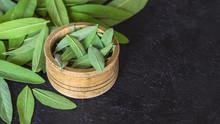 Fresh Leaves Of Medicinal Frag...