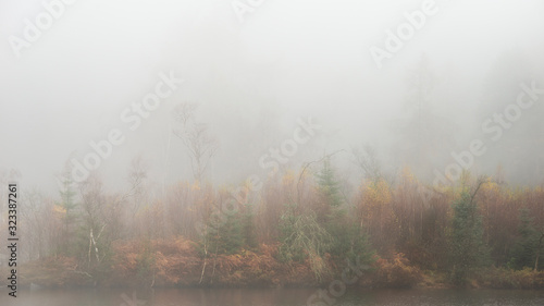 Fotografie, Obraz Beautiful mody Autumn Fall landscape of woodland with mist fog during early morn
