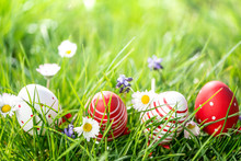 Easter Eggs In Grass And Flowe...