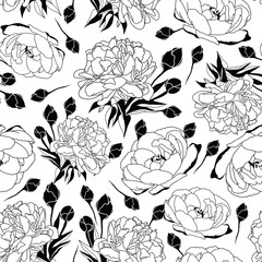 Seamless pattern black and white peony flowers illustration