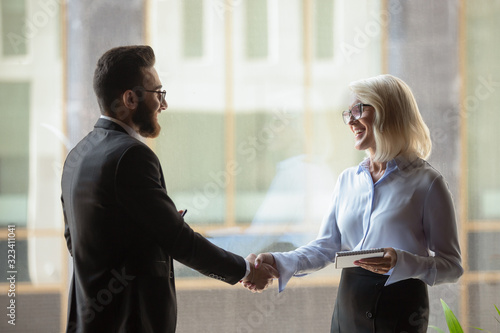Businesswoman and businessman shaking hands at first meeting indoors Wallpaper Mural