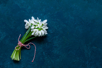 Fresh beautiful bouquet of the first spring forest snowdrops flowers with red and white cord martisor - traditional symbol of the first spring day on classic blue background