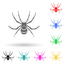 Spider Wasp Multi Color Style ...