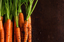 Fresh Carrots In The Ground, O...