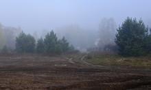 Mud Along The Village Road. Ru...