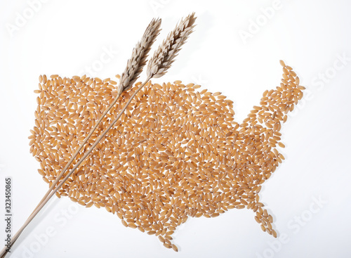 Valokuvatapetti Cartina degli Usa fatta con i semi di grano e con le spighe