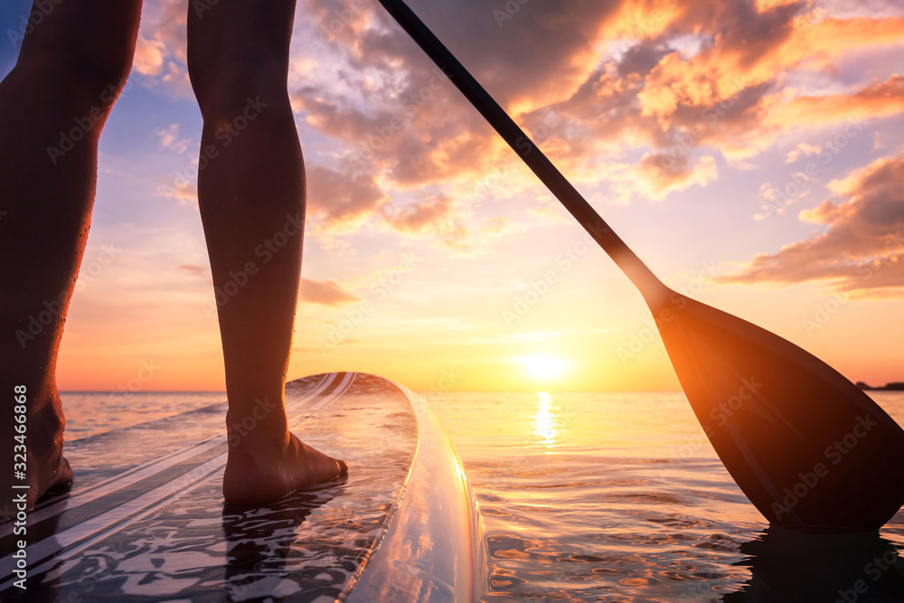 Fototapeta Stand up paddle boarding or standup paddleboarding on quiet sea at sunset with beautiful colors during warm summer beach vacation holiday, active woman, close-up of water surface, legs and board