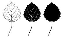 Aspen Leaf. Vector Illustration. Outline, Silhouette, Line Art Drawing