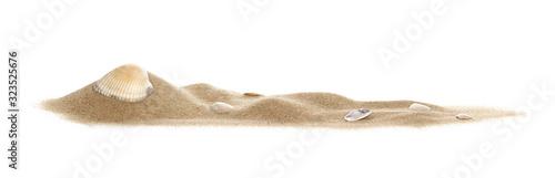 Fototapeta Isolated seashell on sand, white background