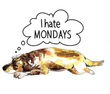 I Hate Mondays. Sad Dog Is Sle...
