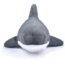 Shark Soft Toy On A White Back...