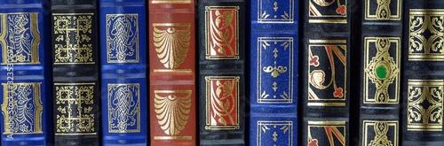 detalle de varios libros en una estantería de una biblioteca