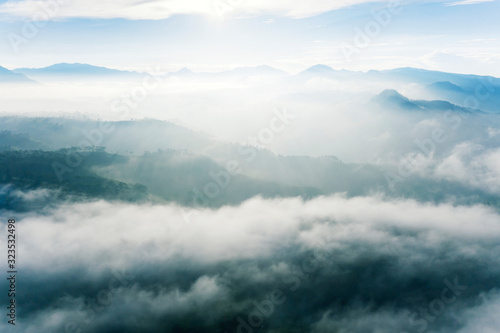 Aerial view of white fog above tea plantation