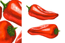 Red Mini Peppers. Fresh Sweet Paprika. Hand Drawn Watercolor Illustration Isolated At White Background. Design For The Label, Cover Packaging And Menu.