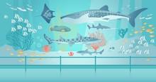 Shark, Stingray, Fish Swim In Saltwater Aquarium