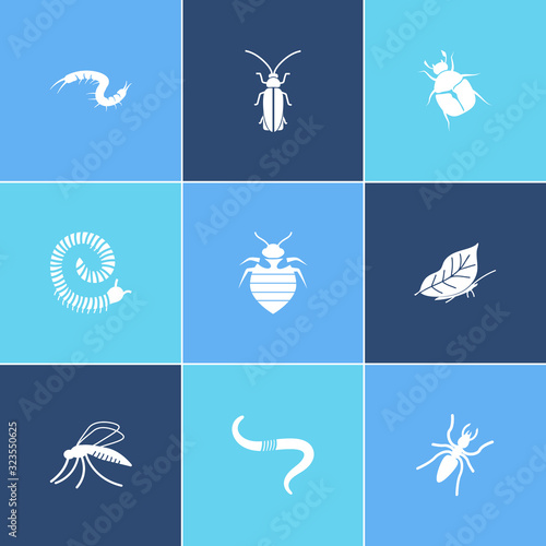 Fényképezés Beetle icon set and firefly with millipede, mosquito and leaf butterfly